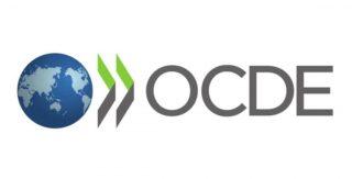 Colingua traduit pour l'OCDE à Bruxelles