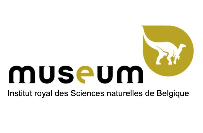 Bureau de traduction spécialisé pour les musées