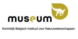Vertaalbureau voor musea uit Brussel en Limburg