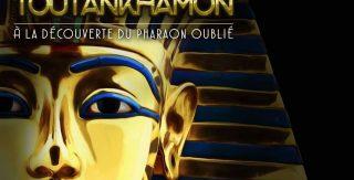 Colingua translates the Tutankhamun exhibition in Liège