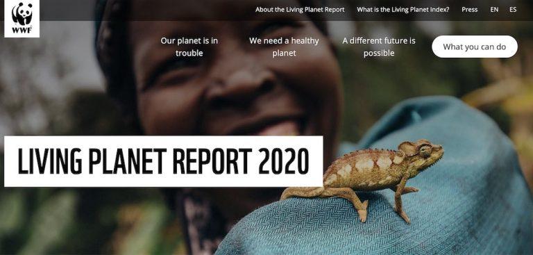 Interprètes pour le WWF