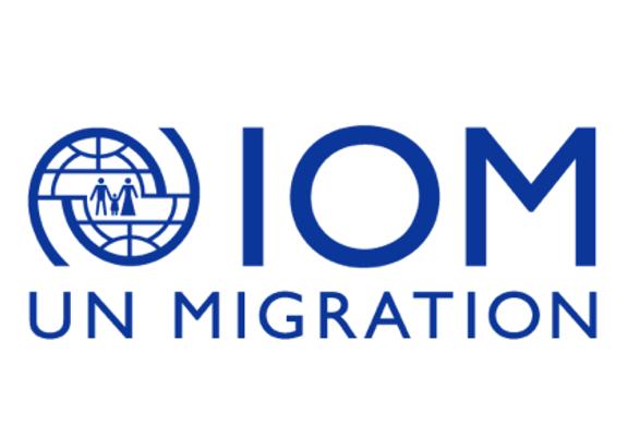 Zoom-webinar van IOM met onze tolken